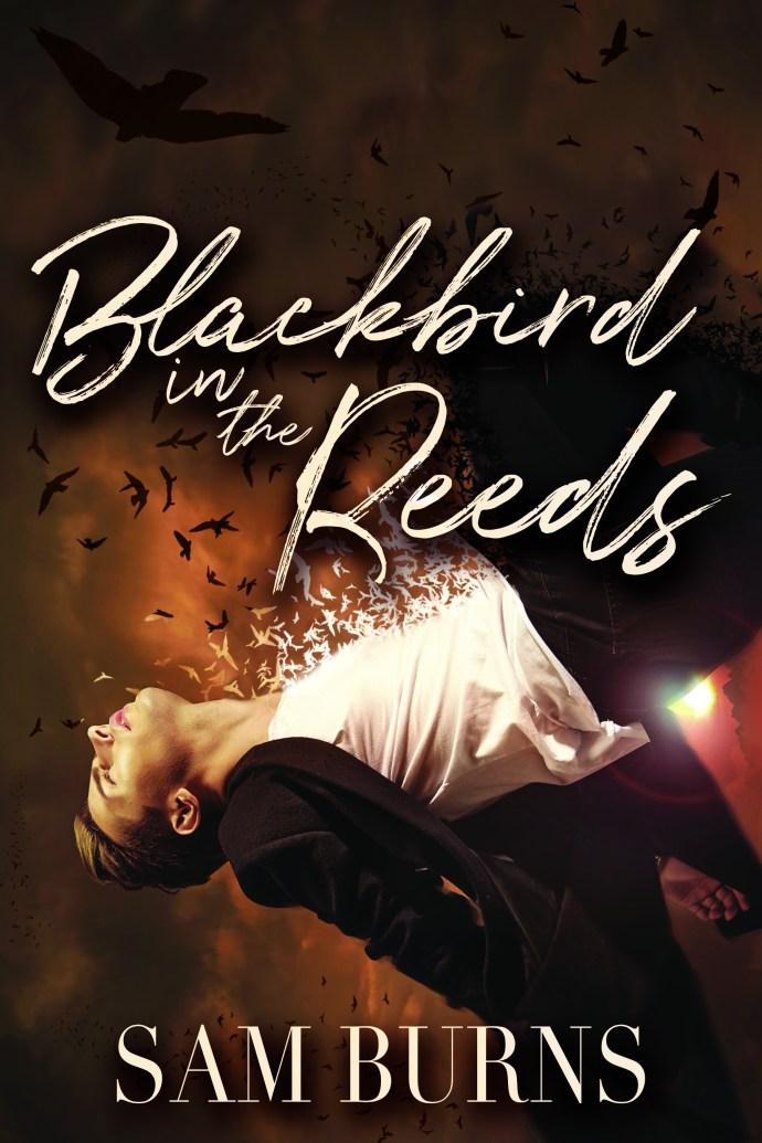 blackbirdcover (2)