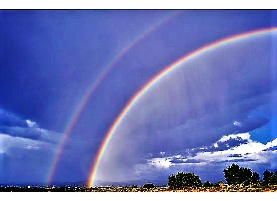 new mex rainbow