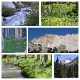Images from John Muir's beloved Sierra Nevada mountains © Author Adventures