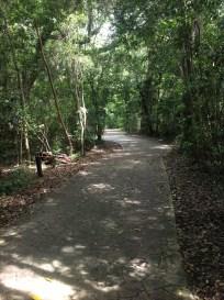 Barnacle woods