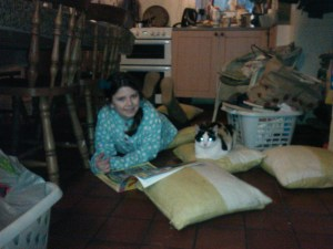 Teaching the calico cat to read