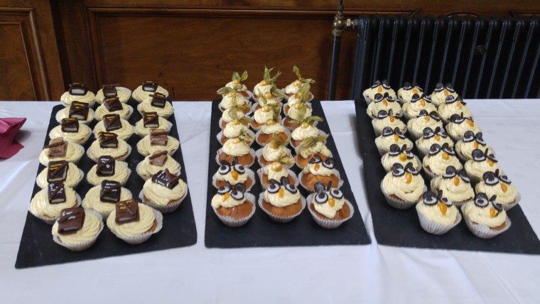 cupcakes featuring books, quidditch snitches and owls