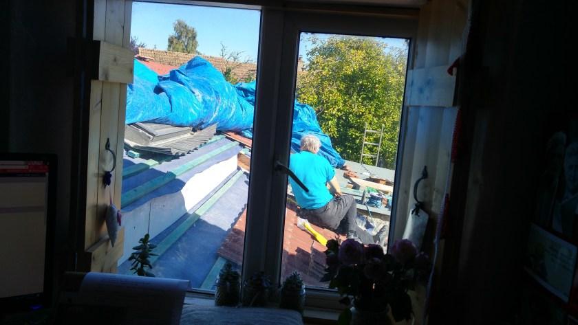 Gordon on the roof, seen through my study window