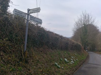 photo of roadsign to Hawkesbury with snowdrops