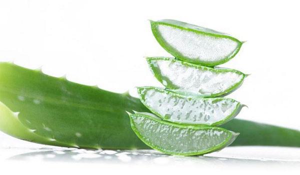 Aloe Vera - Home remédios para cicatrizes da acne