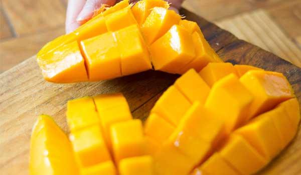 Mango - Como evitar a insolação