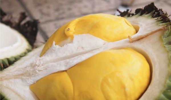 Durian tem sensação de aquecimento - Benefícios de saúde do Durian