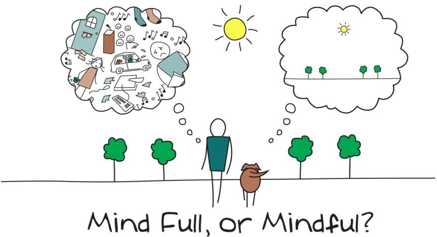 Author Joanne Reed This is your quest what is your superpower mind full or mindful