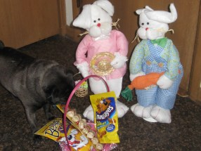 They have brought Ernie an Easter Basket!