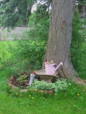 Recycled Sprinkling Can and old lady's shoe under the locust tree.