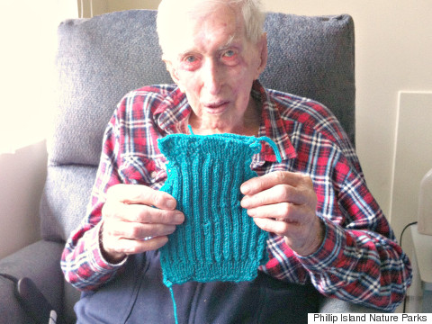 109 year old man knits sweaters for penguins