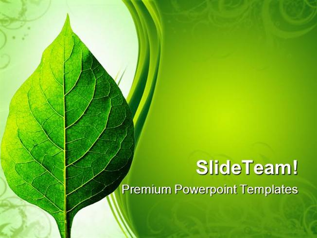Perfect Leaf Nature Powerpoint Themes And Powerpoint Slides Ppt De AuthorSTREAM