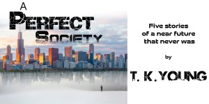 A Perfect Society by T.K. Young