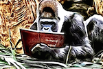 Chris Graham, The Story Reading Ape