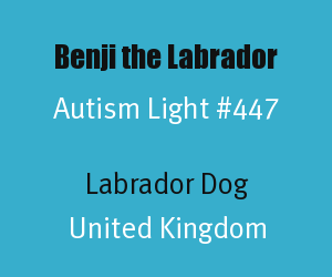 Benji the Labrador