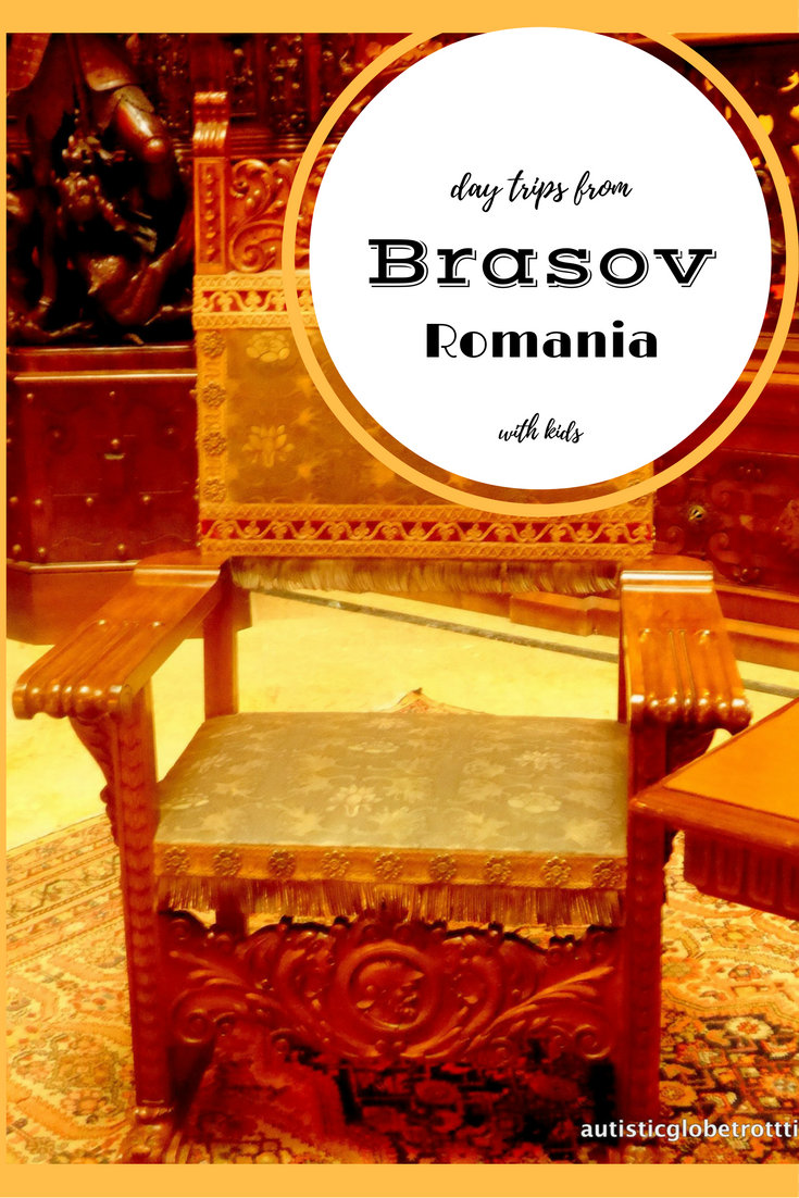 Day Trips From Brasov Romania With Kids pin