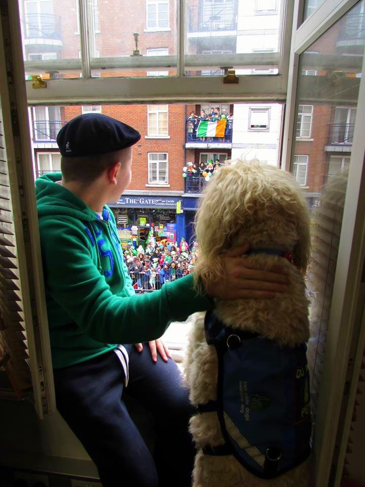 Q&A with Clive -Ireland's Autism Service Dog Extraordinaire parade