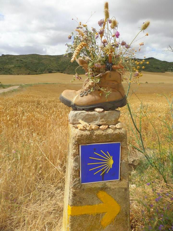 Trekking the Camino de Santiago de Compostela with Autism boot