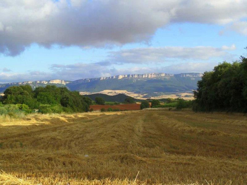 Trekking the Camino de Santiago de Compostela with Autism view