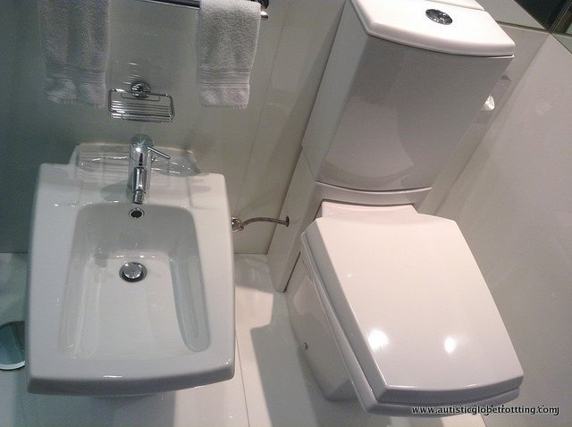 Ten Cultural Differences My Kid With Autism Learned from Traveling bidet