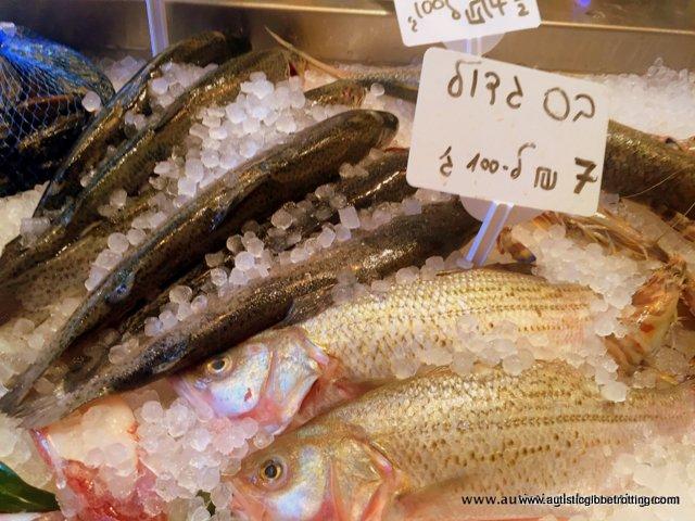 Exploring Tel Aviv's New Food Market Sarona with Family fish