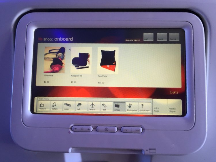 Flying Virgin America with Autism Cagtalog