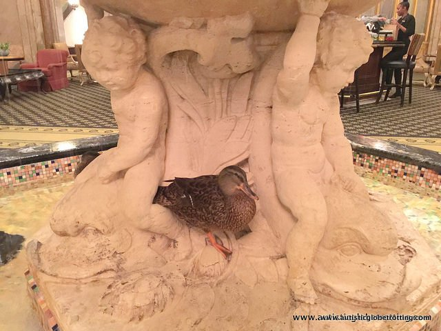 Family Fun at the Memphis Peabody Hotel Brunch statue