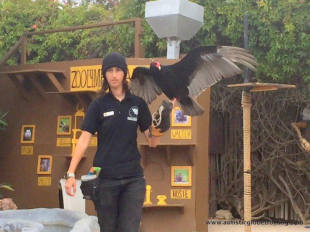 Family Fun at the California Moorpark Teaching Zoo wing