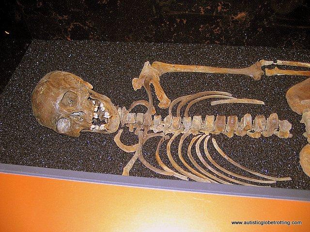 Taking the Family to Stockholm's Vasa Museum bones