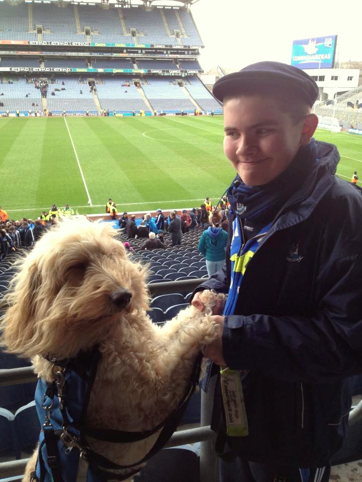 Q&A with Clive -Ireland's Autism Service Dog Extraordinaire ball park