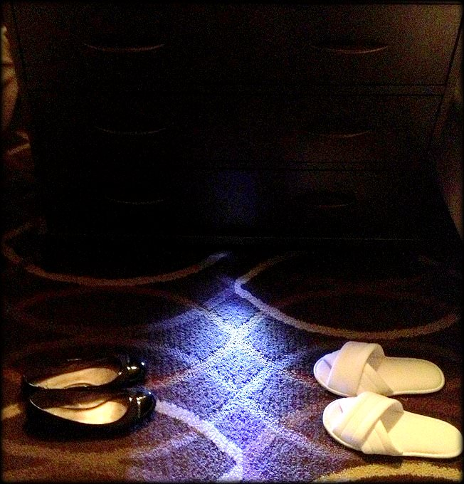 How the Omni Dallas Hotel caters to Special Needs Travelers NIGHTLIGHT