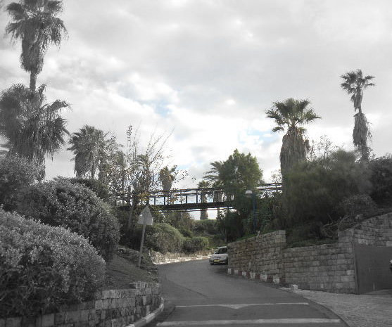 Old Jaffa 2.0 :Reliving childhood memories with the kids bridge
