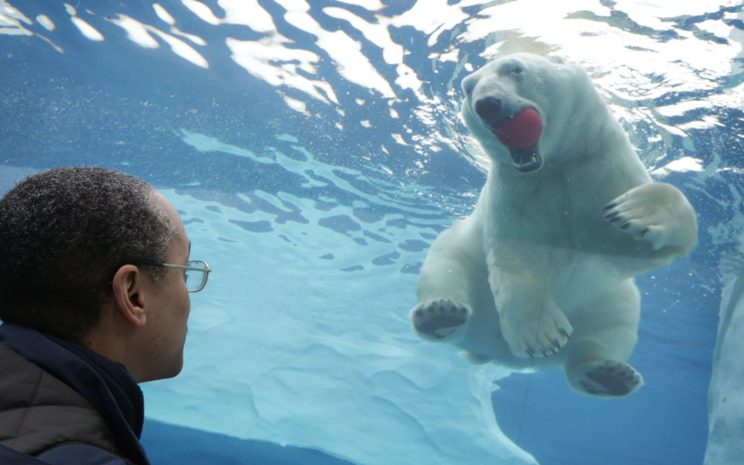 AAoM Delivers First Autism Seal of Approval to the Detroit Zoo