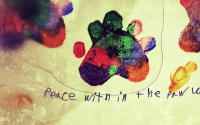 peace within the paw