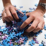 Pieces in the Corporate Puzzle
