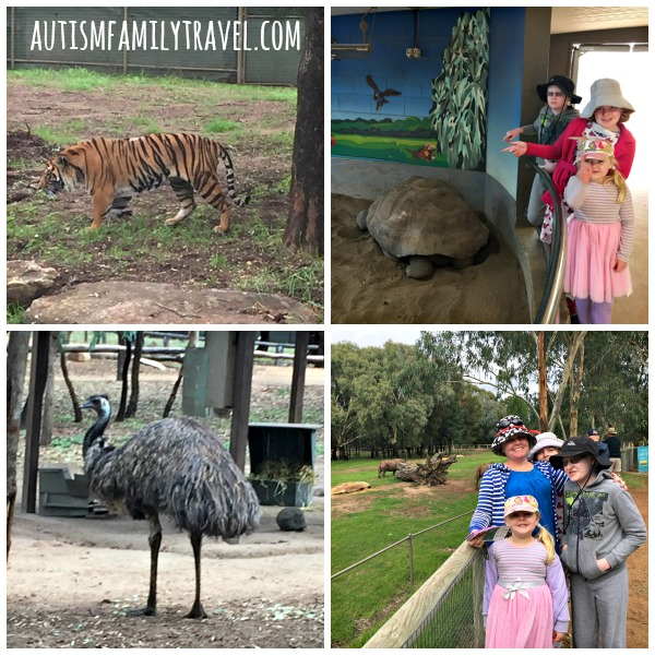 Animal Collage @ Taronga Western Plains Zoo - www.autismfamilytravel.com