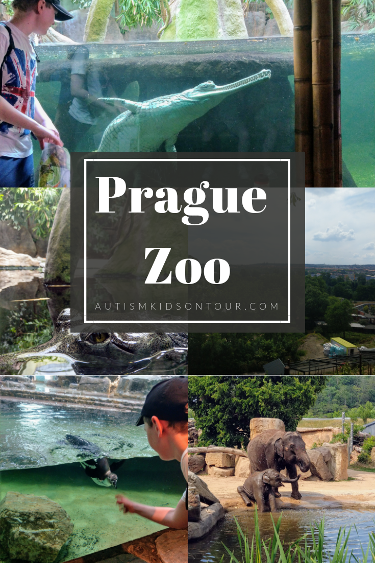 Prague Zoo, a review by autismkidsontour.com