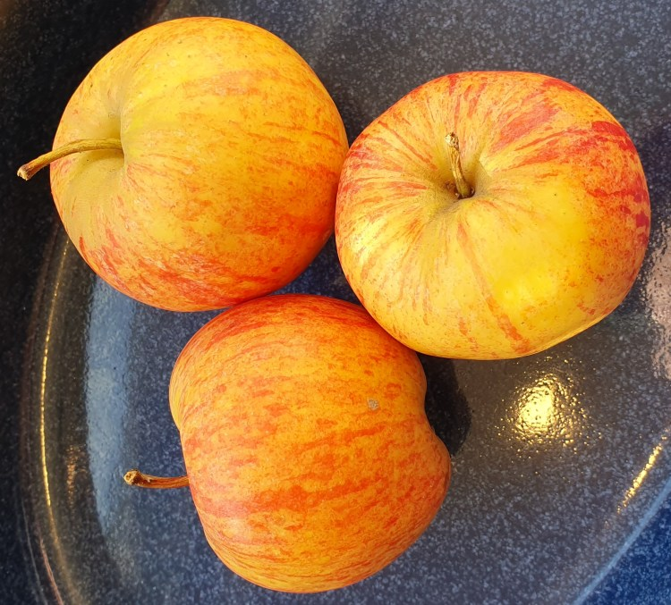 Apples which forms part of the at home experience of tRIBE the show, . Part of the theatre show Tribe, which is for autistic and neurodivergent children. It is a sensory show by Replay theatre company and forms part of the online spark festival due to covid-19, coronavirus, autism