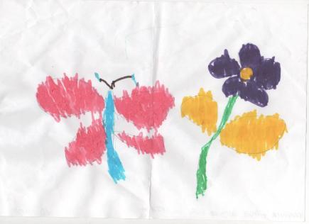 Farfalla e fiore (disegno dopo lettura)