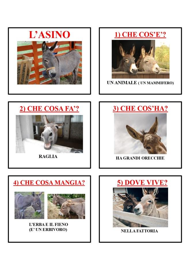 gli animali-i mammiferi_page-0003