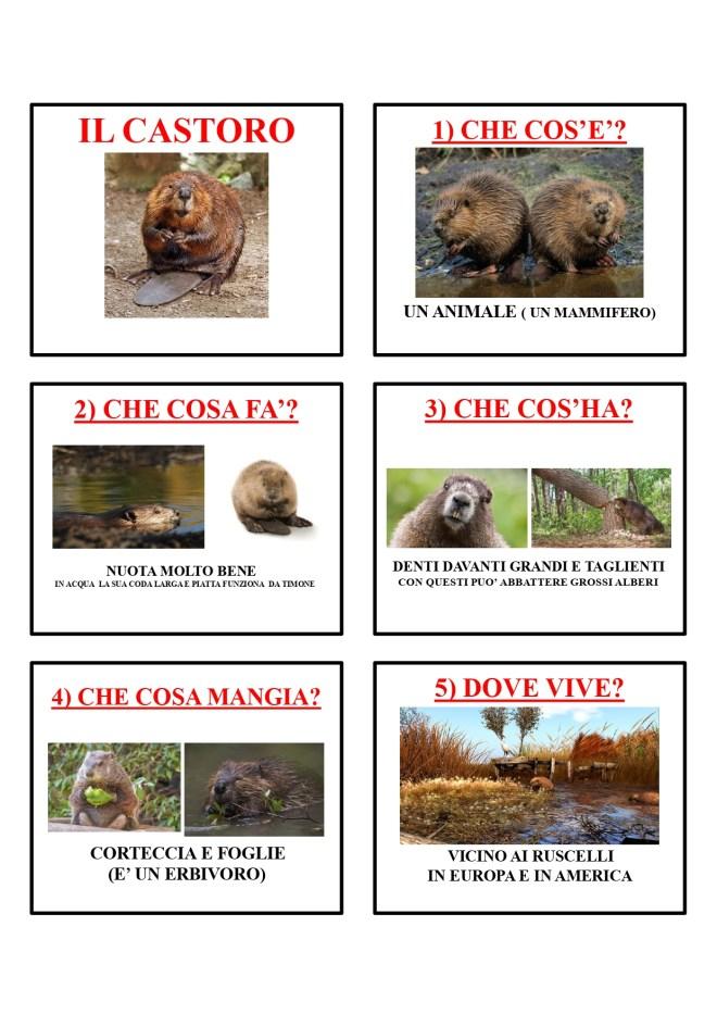 gli animali-i mammiferi_page-0010