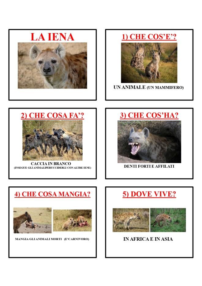 gli animali-i mammiferi_page-0022