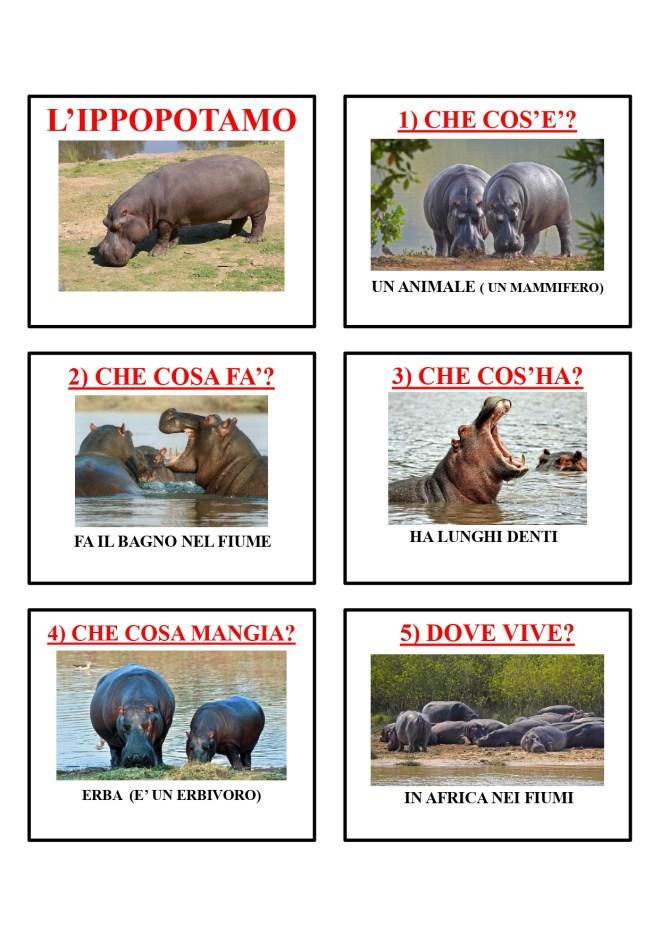gli animali-i mammiferi_page-0023
