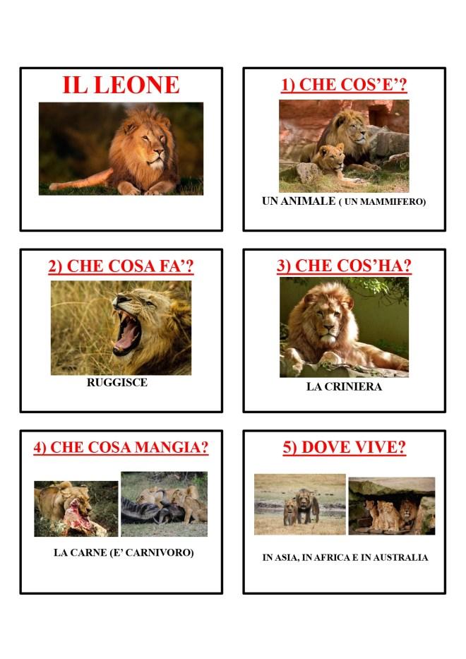 gli animali-i mammiferi_page-0025