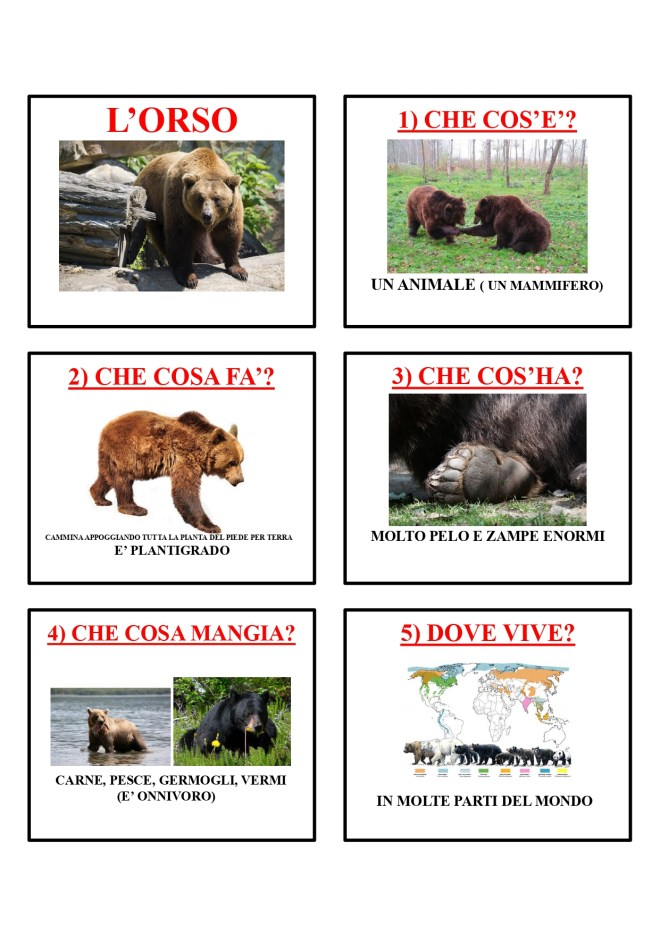 gli animali-i mammiferi_page-0031