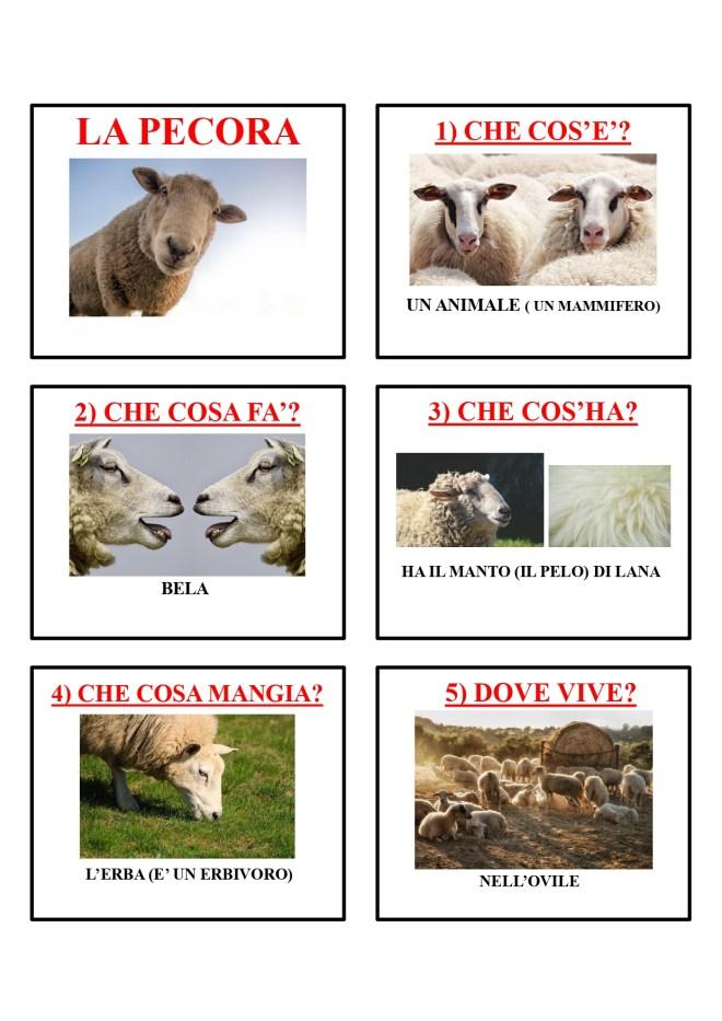 gli animali-i mammiferi_page-0034