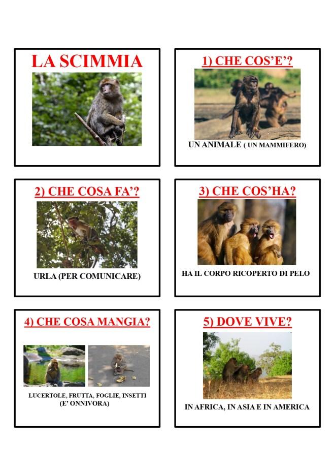 gli animali-i mammiferi_page-0039