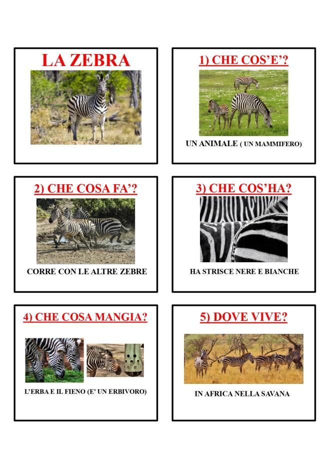 gli animali-i mammiferi_page-0046