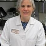 Un estudio confirma el papel que ejerce la serotonina en muchos casos de Autismo