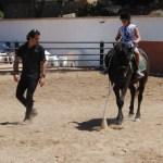 Terapia Asistida con Animales: Caballos